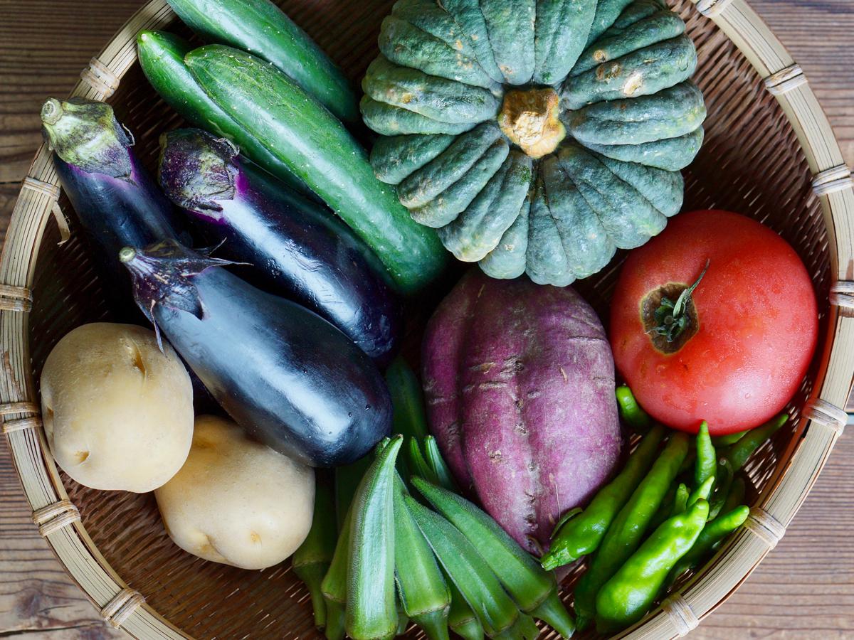 山城産 地場野菜(一例)