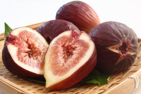 不老不死の果物